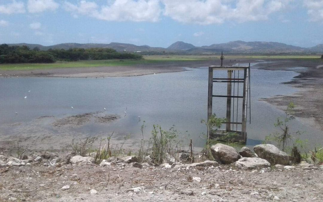 Drought sees Potworks Dam out of action for two months
