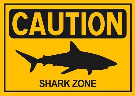 INTERNATIONAL: Shark pulls 10-y-o from fishing boat in Australia