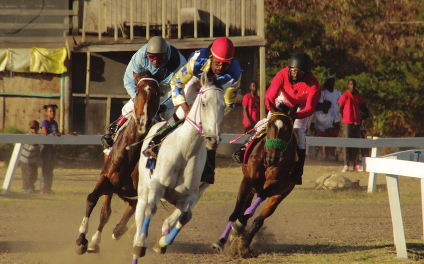 Cochrane defends Turf Club against criticism over track use