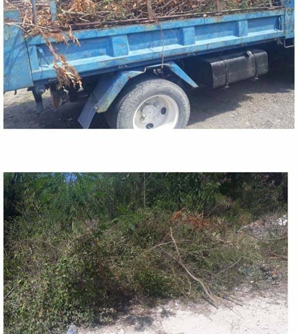 Man fined $3K for illegal dumping one year ago